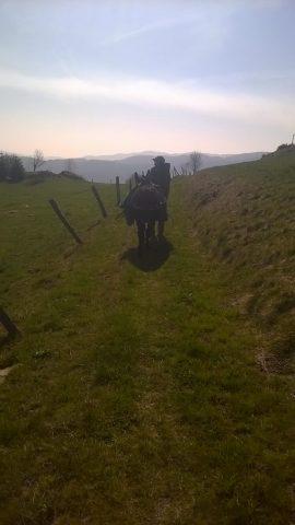 Sur le chemin de Brion
